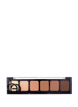 Correct a conceal pallete 2